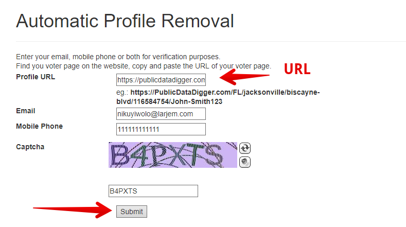 how to remove yourself from publicdatadigger.com