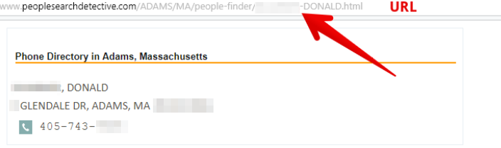 how to remove yourself from peoplesearchdetective.com